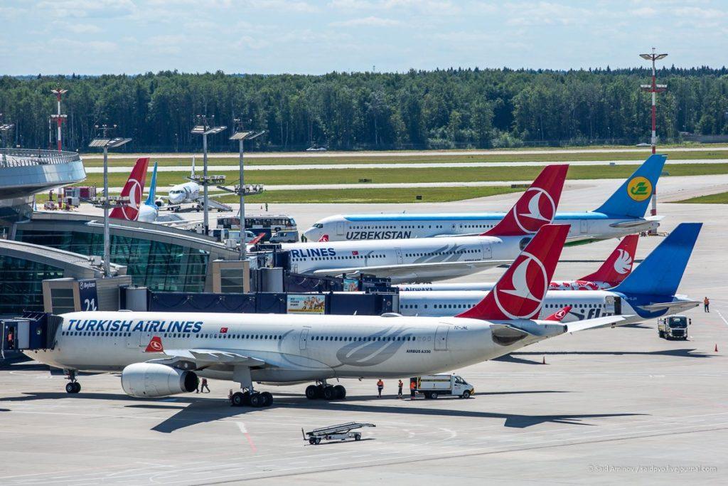 Рейсы в Турцию и Великобританию возобновляются из аэропорта Внуково
